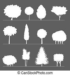 körvonal, bushes., bitófák