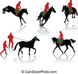 körvonal, ló, equestrians