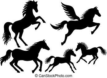 körvonal, vektor, ló