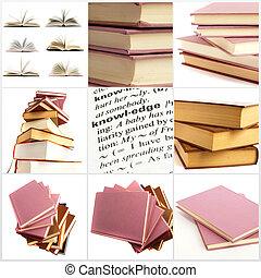 különböző, állhatatos, könyv, apródok