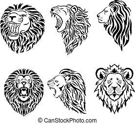 kabala, jel, nagy, arc, állhatatos, oroszlán