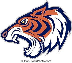 kabala, tigris fő