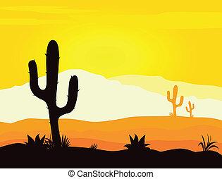 kaktusz, mexikó, dezertál, napnyugta