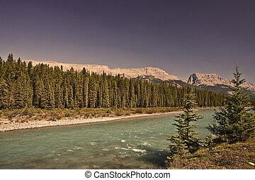 kanada, banff, -, nemzeti park, íj, alberta, folyó