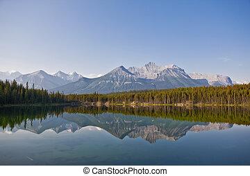 kanada, banff, -, nemzeti park, tó herbert, alberta