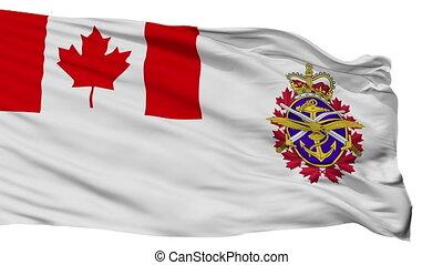 kanadai, elszigetelt, seamless, lobogó, erőltet, bukfenc