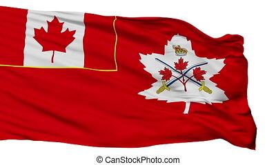kanadai, hadsereg, elszigetelt, seamless, lobogó, bukfenc
