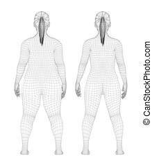 karcsú, kövér, nő, előbb, súly, után, kár