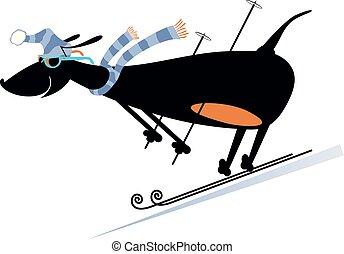 karikatúra, ábra, síelő, lesiklás, kutya