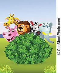 karikatúra, állat, furcsa, vad