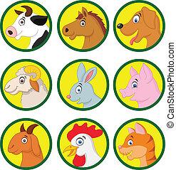 karikatúra, állat, gyűjtés, tanya