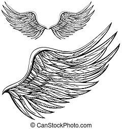 karikatúra, angel szárny