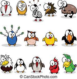 karikatúra, gyűjtés, madarak