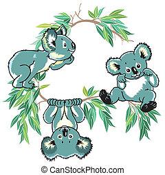karikatúra, koala, hordoz