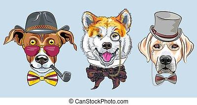 karikatúra, vektor, csípőre szabott, állhatatos, kutyák