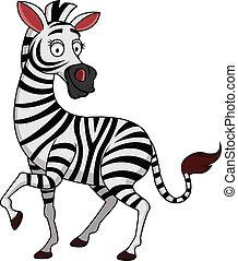 karikatúra, zebra