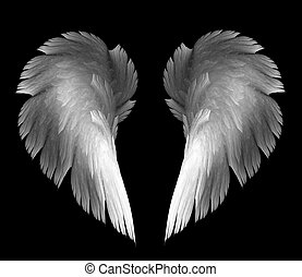 kasfogó, angyal