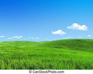 kaszáló, természet, -, gyűjtés, zöld, sablon