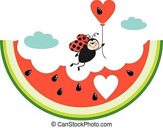 katicabogár, görögdinnye, ábra