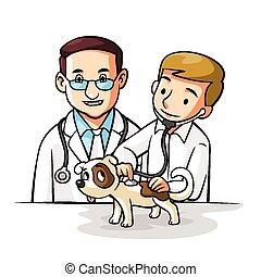 kedvenc, orvos