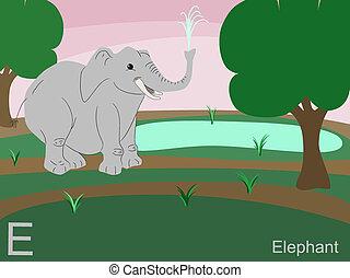 kelet, állat, abc, elefánt