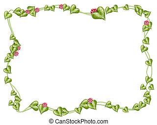 keret, virág, szőlőtőke
