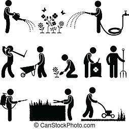 kertészkedés, munka, munkás, kertész