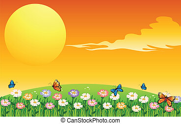 kert, dombok, színes, felül