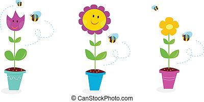 kert, napraforgó, eredet, -, tulipán, százszorszép, menstruáció
