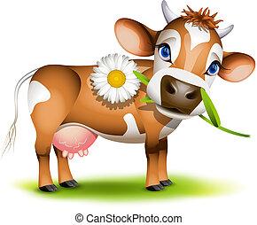 kevés, étkezési, mez tehén, százszorszép