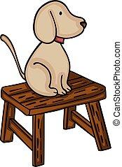 kevés, erdő, kutya, bírói szék