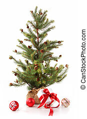 kevés, fa, christmas tehetség, piros, felszalagozott, fehér