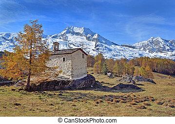 kevés, francia templom, alpesi növény, liget, havas, elülső, hegy, nemzeti