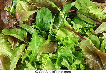 kevert, friss, tető, saláták, kilátás