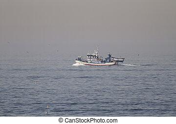 kikötő, hagyományos, felé, fenékhálós halászhajó, vitorlázás