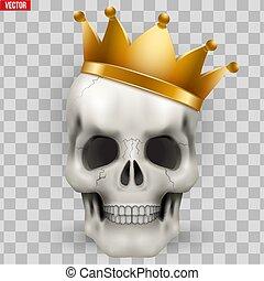 király, koponya, arany- lombkorona, vektor, emberi