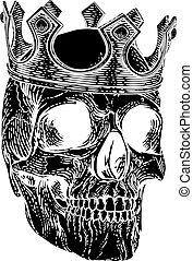 királyi, csontváz, koponya, emberi, király, fejtető