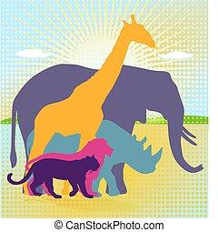 királyság, állat, afrikai
