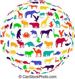 királyság, egyveleg, állat