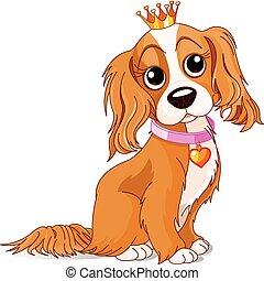királyság, kutya
