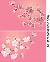 kivirul, cseresznye, állhatatos, kártya