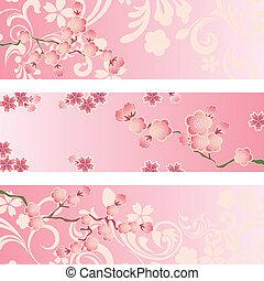kivirul, cseresznye, állhatatos, transzparens