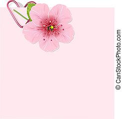kivirul, cseresznye, levél