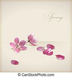kivirul, cseresznye, vektor, tervezés, eredet, virágos, menstruáció