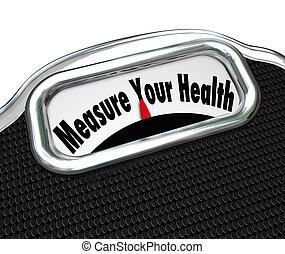 kivizsgálás, kár, mérleg, súly, egészséges, egészség, felbecsül, -e