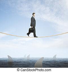 kockáztat, cápa, felül, ember, fogalom