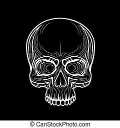 koponya, elszigetelt, object., emberi, szín, fekete