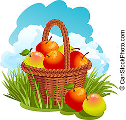 kosár, alma