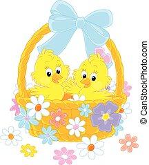 kosár, csibék, húsvét