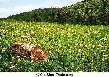 kosár, fű, piknik